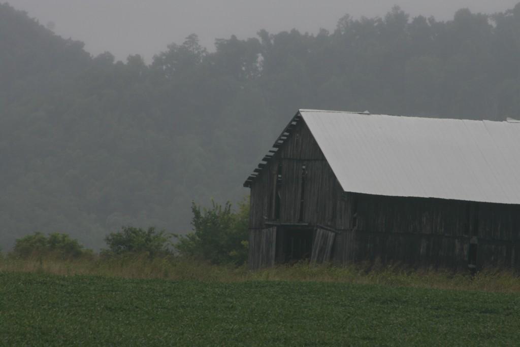 Barn in mist