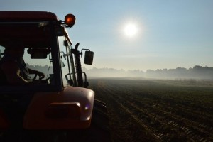 Tractor in field during early morning